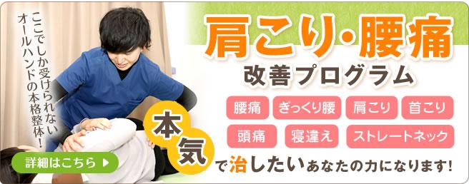 肩こり・腰痛改善プログラム